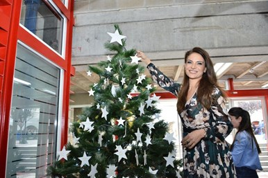 Be a Star on the Christmas Charity Tree